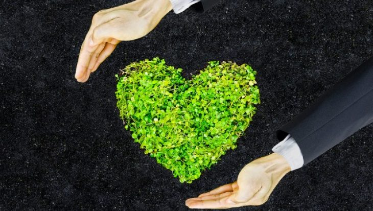 Micro greens in the shape of a love heart with hands trying to hold it.