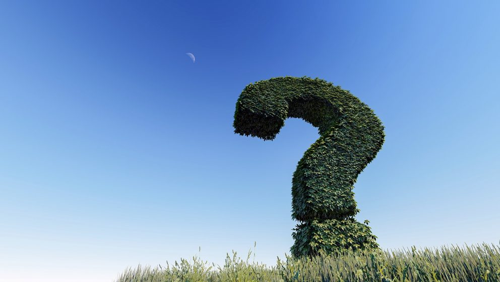 Question Mark Hedge