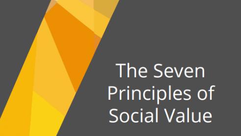 SVI Seven Principles of Social Value